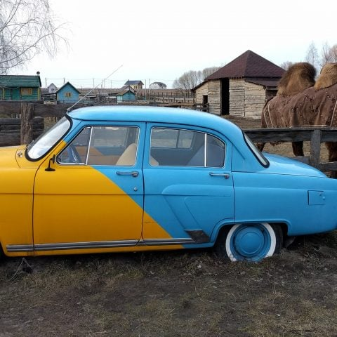 Ukrainian Car and a Camel